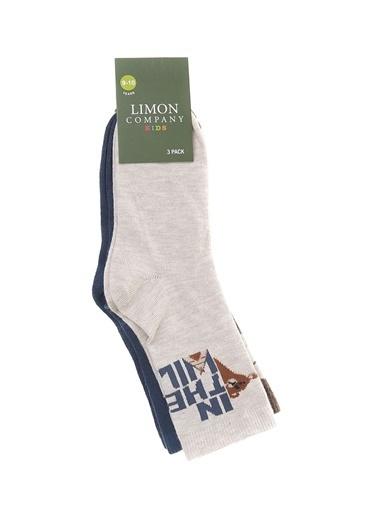 Limon Company Soket Çorap Kahve